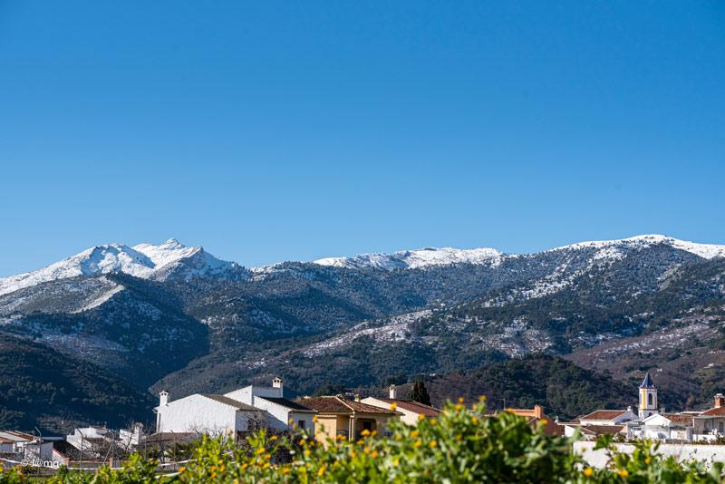 Curso guia parque nacional Sierra de las Nieves nevada